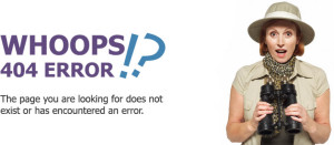 An example of a 404 error - page not found